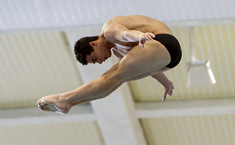 Arena European Diving Championships