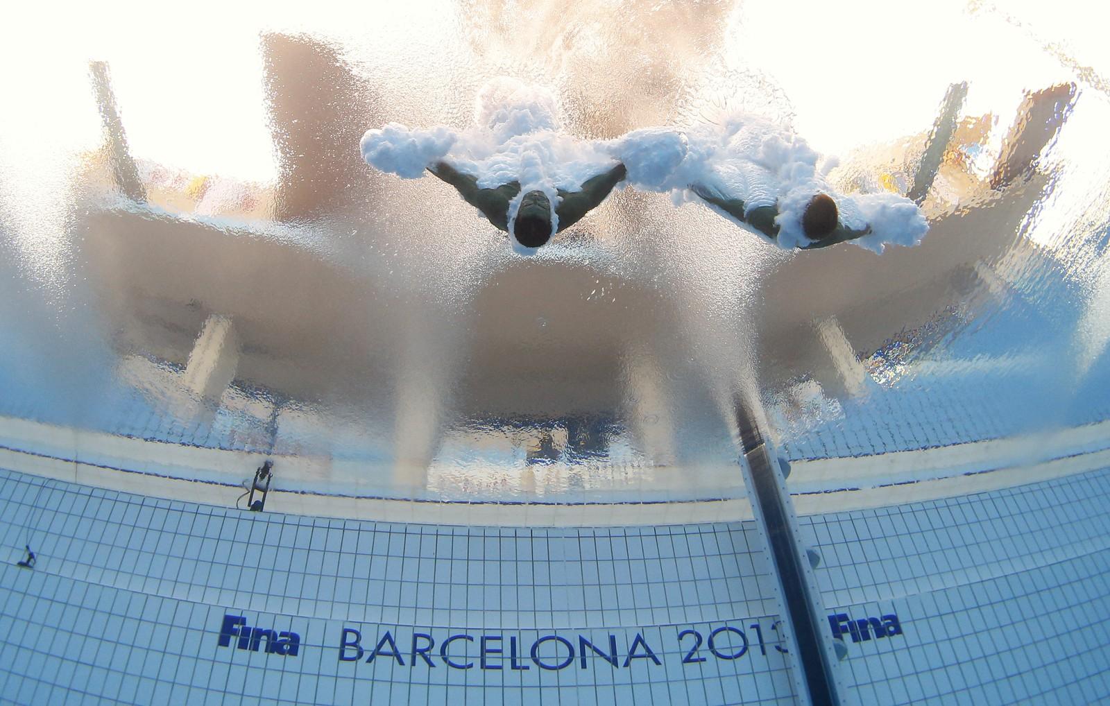 Diving Tuffi  Mondiali Barcellona 2013 036